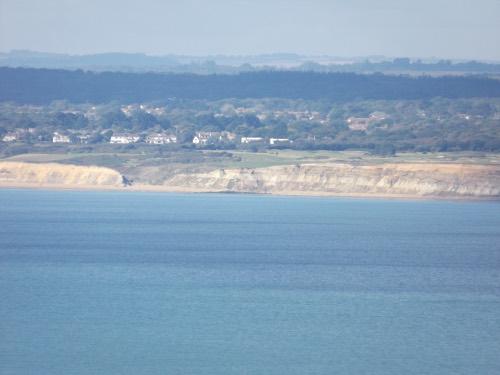 Beckton Bunny near Barton-on-Sea